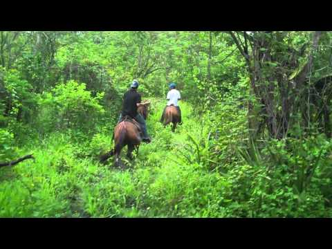 Horseback riding in northern Nicaragua