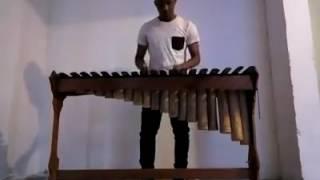 Despacito en versión Marimba