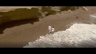 Video Clip - Con Francisco a Caminar