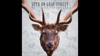 Seth on Gray Street- Springtime for Man's Son (lyrics in description)