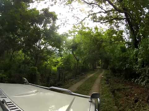 Greenpathways Tours Nicaragua – Ometepe Island – on route to Volcano Maderas