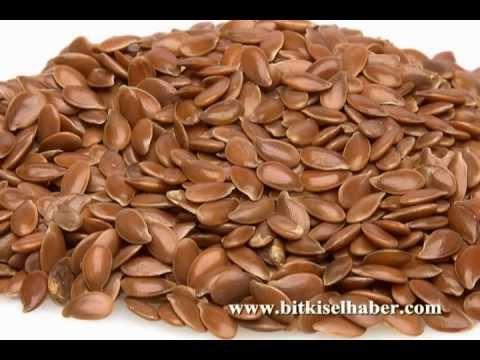 Herbalist Hicret Günhan- Şişkinlik halsizlik kabızlık hemoroid basur