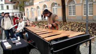 Marimba performance on the street in Weimar, Germany
