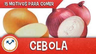 15 MOTIVOS PARA COMER CEBOLA (os benefícios da cebola)
