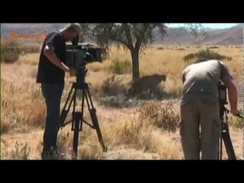 Namibia Wildlife Sanctuary and Namibrand Big Cat Conservation Volunteer Projects