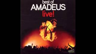 Amadeus band-kamerav live