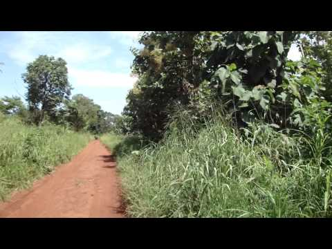 Road from Juba to Yei in South Sudan Africa 5