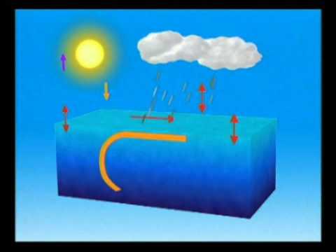 氣象局影音白板--颱風短片 -