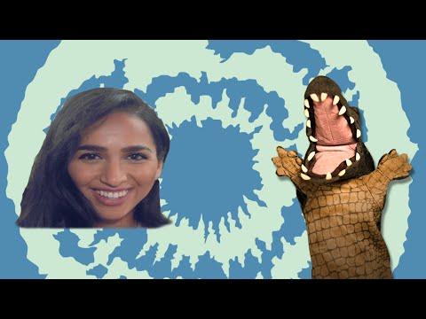 التمساح الحلقة ٨٨: المقابلة الهلا هلا هيه  | Temsa7LY