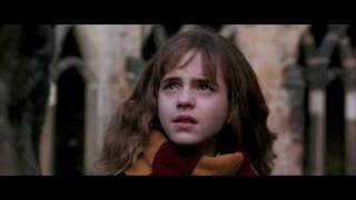 Harry Potter and Hermione Granger feat. Miley Cyrus - Party in The U.S.A