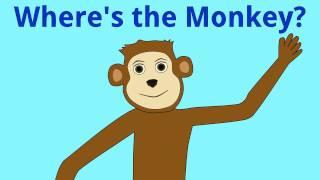 Where's the Monkey?