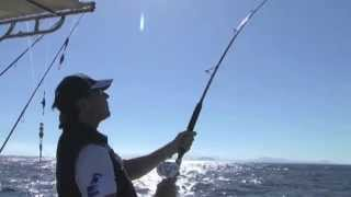 Italian Fishing TV - Colmic - Spot - Live Hook