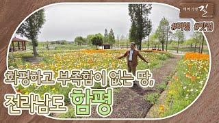 [테마기행 길] 진한 문화와 오랜 세월이 담긴 고장, #함평 다시보기