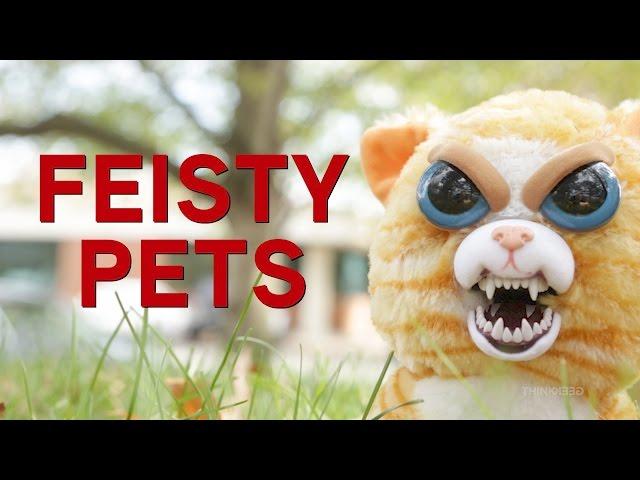 Feisty Pets Thinkgeek
