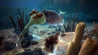 David Attenborough's First Life | Natural History Museum