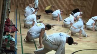 Capoeira Meia Lua Inteira Vienna