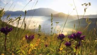 'Lost In Time'- David Mindel & Miriam Stockley