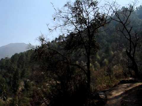 В горах Непала (в деревне Thulo Syabru)