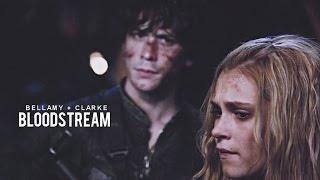Bellamy & Clarke | Bloodstream