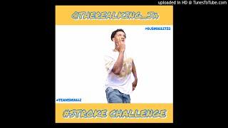 DJ Smallz 732 - STROKE CHALLENGE ( @Therealking_ja Anthem )