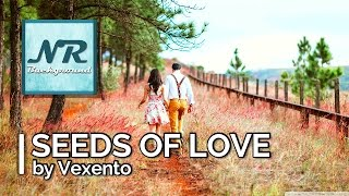 ✰ NO COPYRIGHT MUSIC ✰ Seeds of Love - Vexento ✰ NR Background