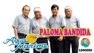PALOMA BANDIDA -AGUA MARINA