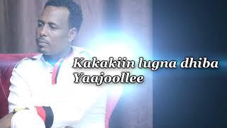 """Dassaaleny Beekamaa """"Elaamee""""Sirba Afaan Oromoo 2019"""