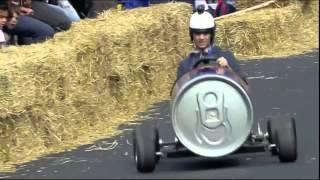 Favij guida una Red Bull