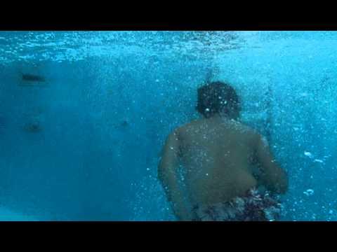 """Bengali """"Swan Dive"""""""