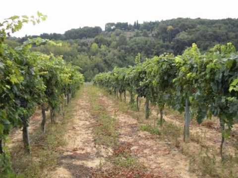 Iwaras mot panagkitam / ilocano song / Tuscany Countryside view