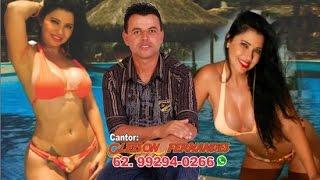 Cantor Gleison Fernandes. Alucinação - (62) 99479-7274 (Whatsapp)