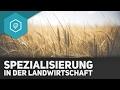 spezialisierung-landwirtschaft/