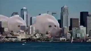 Joey Trap - Sesame Street ( Seal Meme )