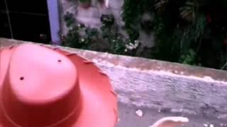 El escape de woody en live action.(Toy story 3)