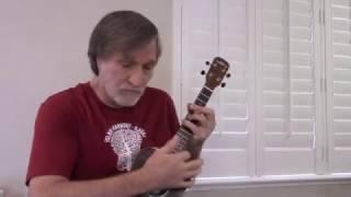 The Sky Is Crying - ukulele blues