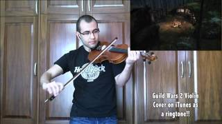 Guild Wars 2 Violin Cover (Norn Theme)