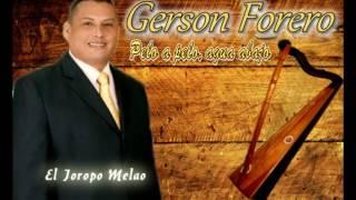 Gerson Forero - El Joropo melao MUSICA LLANERA
