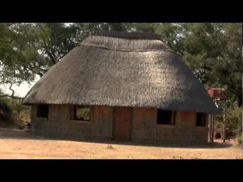 Bush House Dreaming… Chipembele. Kaye Brown