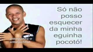 Egüinha Pocotó - MC Serginho