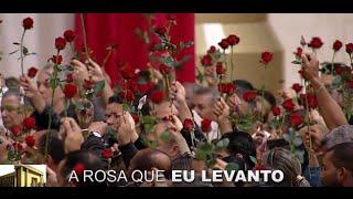 Clip - Rosa de Saron - Templo de Salomão - Igreja Universal - IURD - Link para Download abaixo