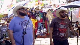 La Pauta - Ya No Me Busques (En Vivo 2016) HD