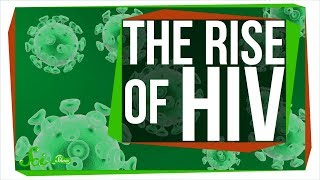 Why Miami is the epicenter of new HIV cases in the U.S. width=