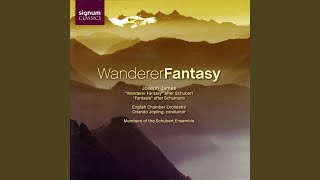 Wanderer Fantasy in C after Franz Schubert (D. 760) : Allegro