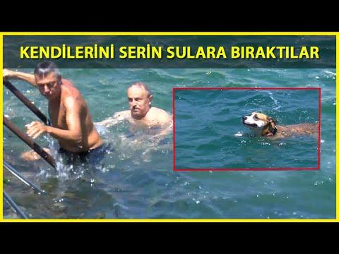 Serinlemek İsteyenler İstanbul Boğazı'ında Denize Girdi