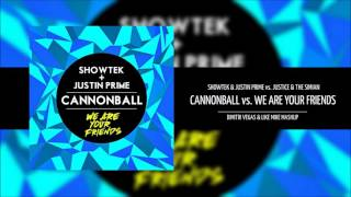 Cannonball vs We Are Your Friends (DV&LM Smash The House Stage TML´13 Mashup)