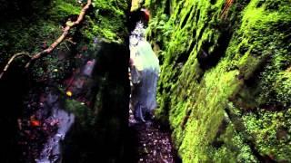 Gary Beck - Algoreal (Official Video)