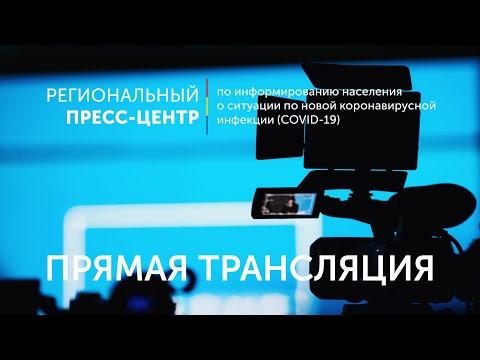 Брифинг министра информационных технологий и связи Ростовской области Г.А. Лопаткина