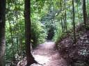 The Red Arrow Walk, Cairns, Australia