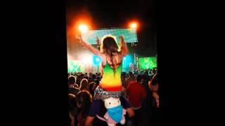 Bob Marley - Mr.Brown (Robotic Pirate Moneky Remix)