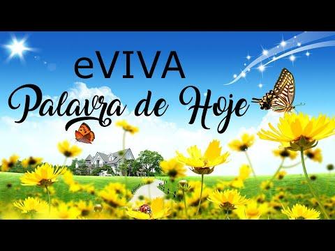 PALAVRA DE HOJE 23 DE MARÇO eVIVA MENSAGEM MOTIVACIONAL PARA REFLEXÃO DE VIDA - BOM DIA!